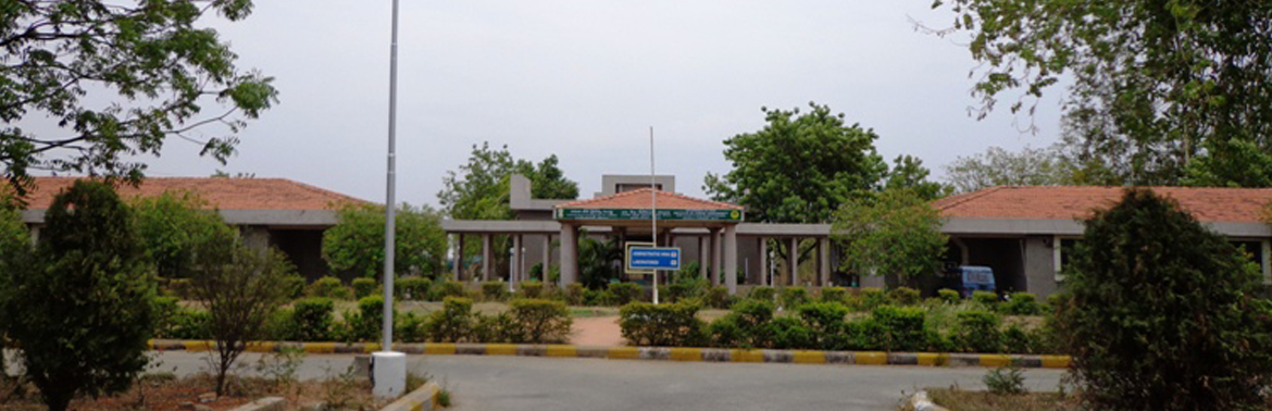INSTITUTE OF FOREST BIODIVERSITY